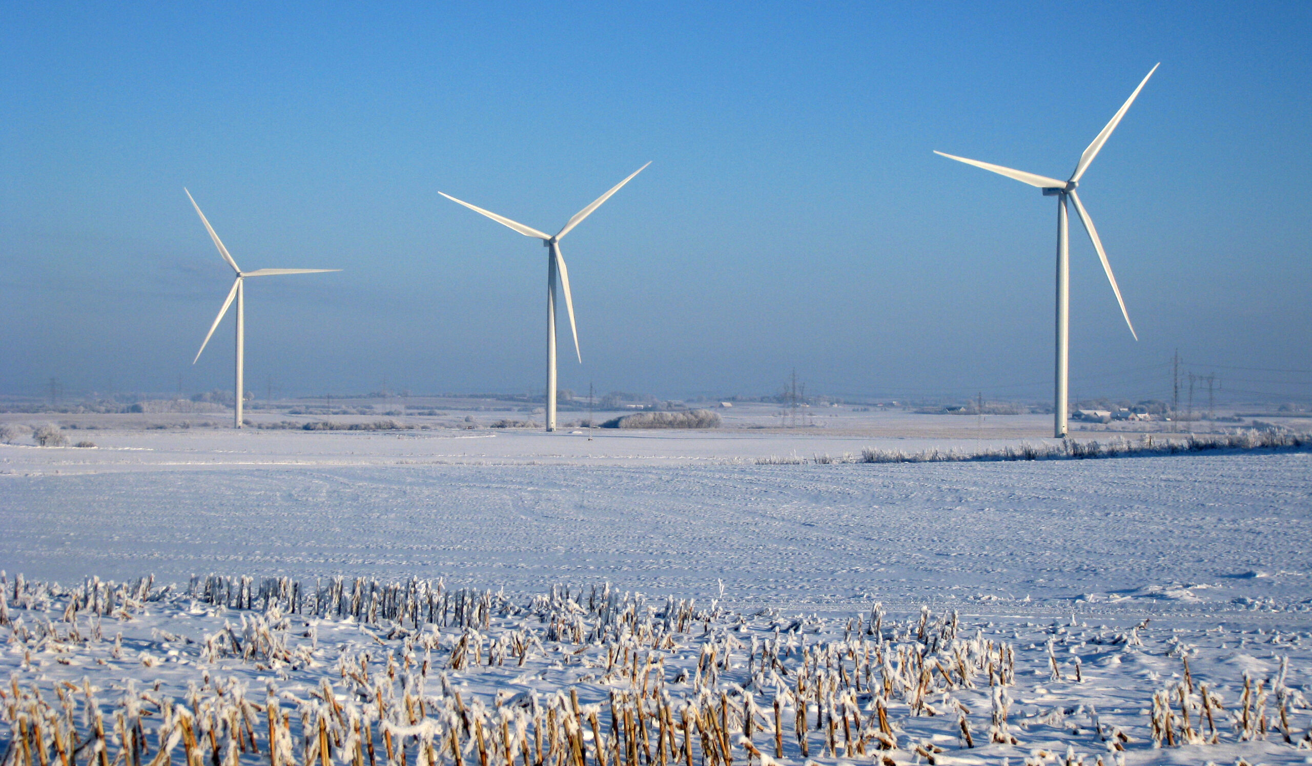 Det bæredygtige klima